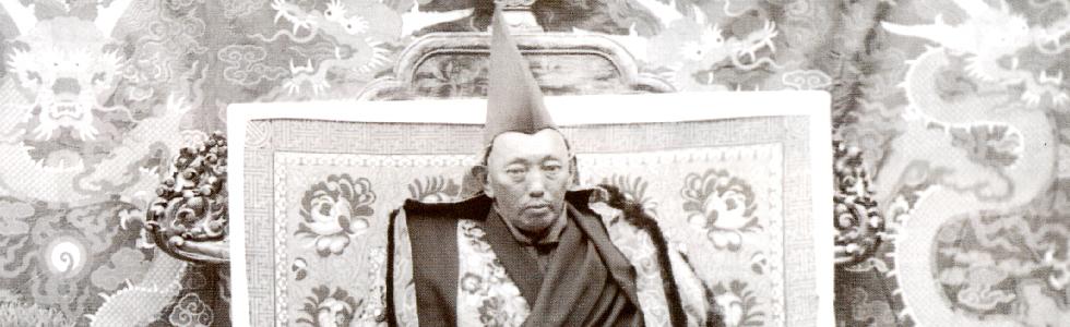 The Thirteenth Dalai Lama, Tubten Gyatso by Tsering Shakya