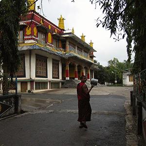 Buddhist Monk In Drepung Monastery, India